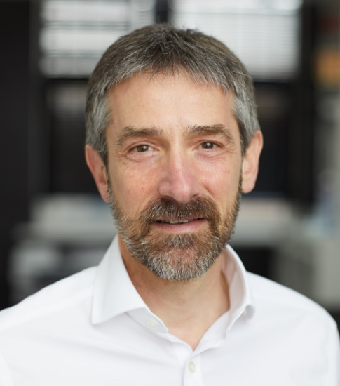 Team - David Goldman